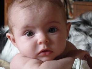 Baby Savanna