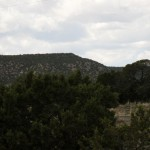 New Mexico Hills