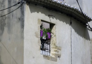 France is a place of flowers in the windows