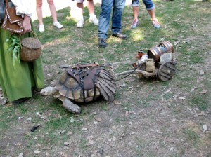 Turtle pulling wagon with beer barrel.