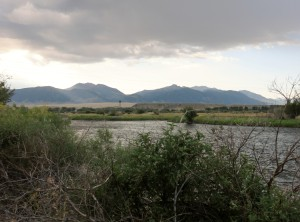 Madison River flowing