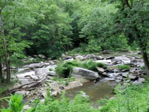 Stream rushing down Hickory Nut Gorge