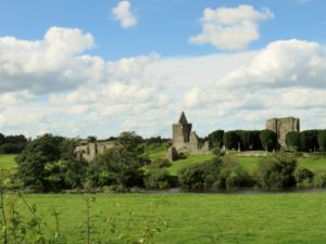 Mellifont Abbey and cemetary